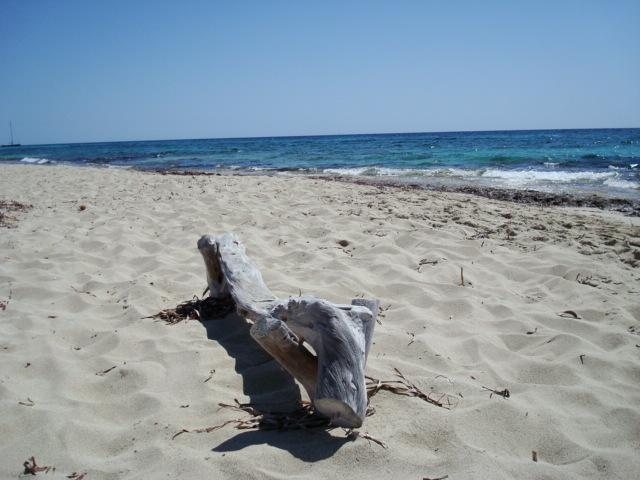 Formentera bilancio estate 2011 cosa cambia e cosa no - Formentera maggio bagno ...