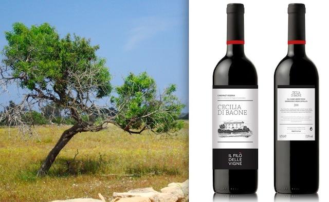 Campagna di Formentera e vino del Filò