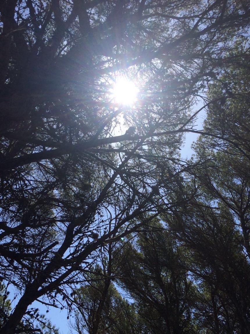 natura-sole