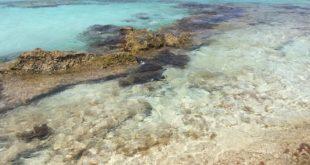 spiagge migliori di formentera